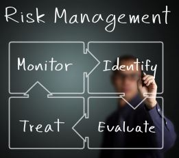 Business Risk 2
